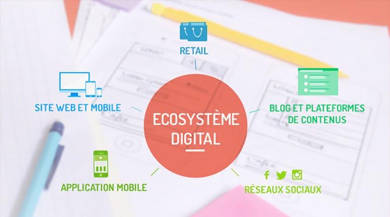 blog ecosysteme