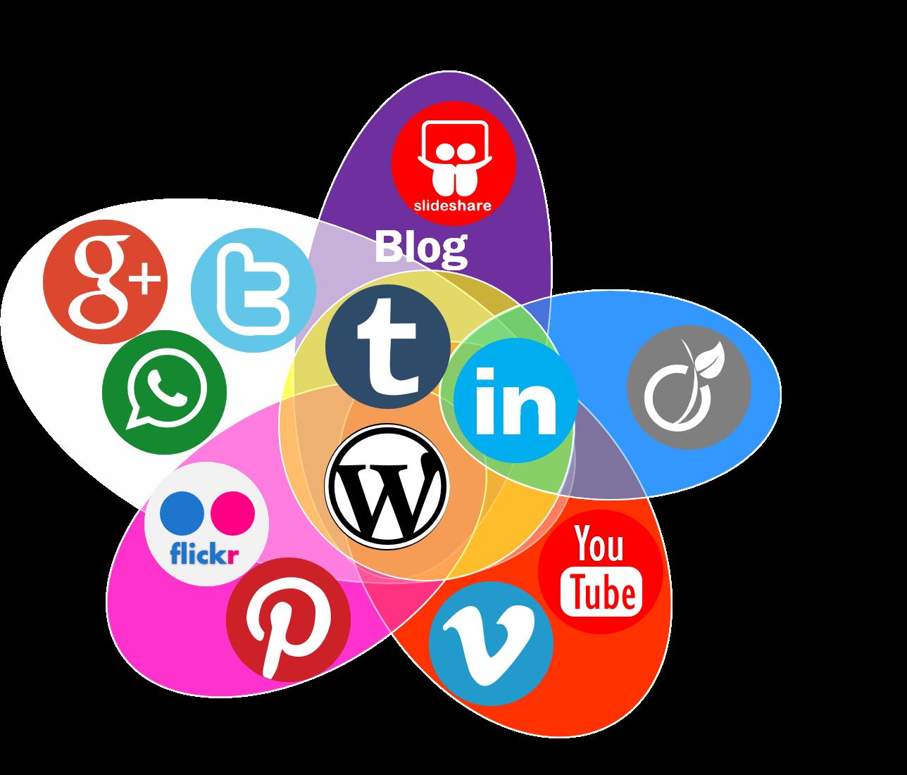 reseaux sociaux site